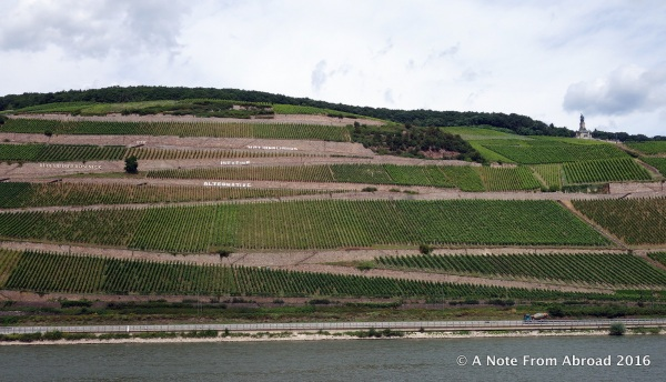 Each vineyard has the name in large lettering