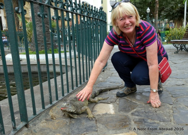 Joanne with an arboreal Iguana
