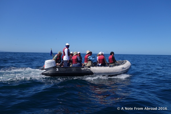 This is one of the panga boats we used
