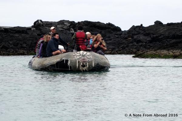 Panga ride to explore the shoreline