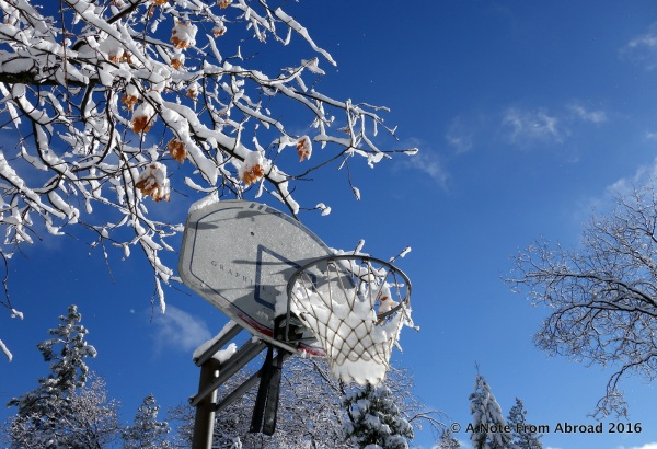 Our neighbors basketball hoop waiting for spring