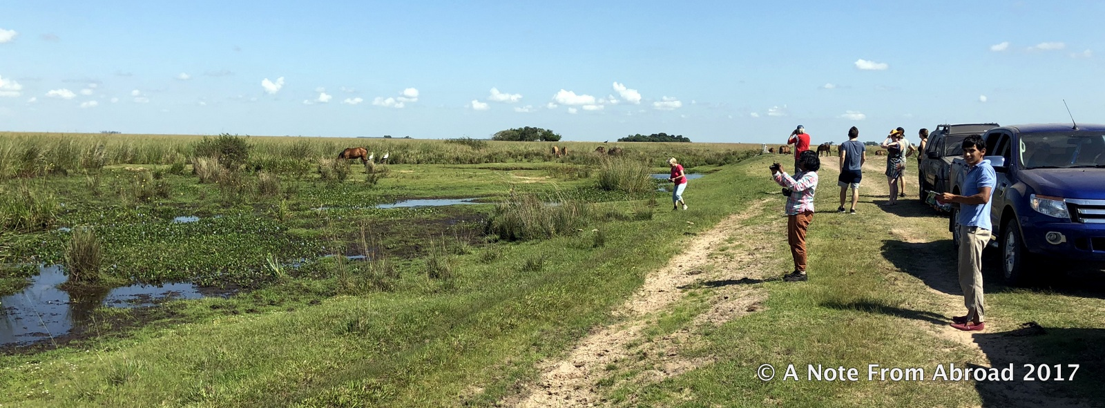 The Ibera Wetlands of Argentina